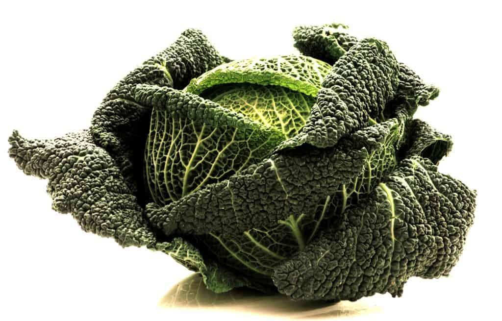 A kelkáposzta főzelék az ilyen, méregzöld zöldségből a legjobb